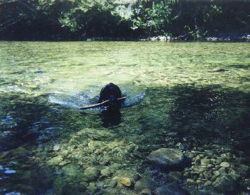 Ashley having fun in the water.